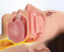 متخصص گوش و حلق و بینی سعادت آباد